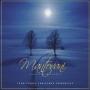 Mantovani Orchestra & Chorus -- Mantovani Traditional Christmas Favourites (CD)