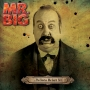 Mr. Big -- ...The Stories We Could Tell (CD+DVD)